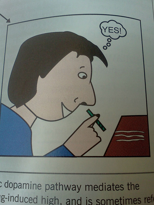 14095576164393 funny textbook fails 30 Hilarious!! 33 Images of Silly Mistakes in Textbooks!