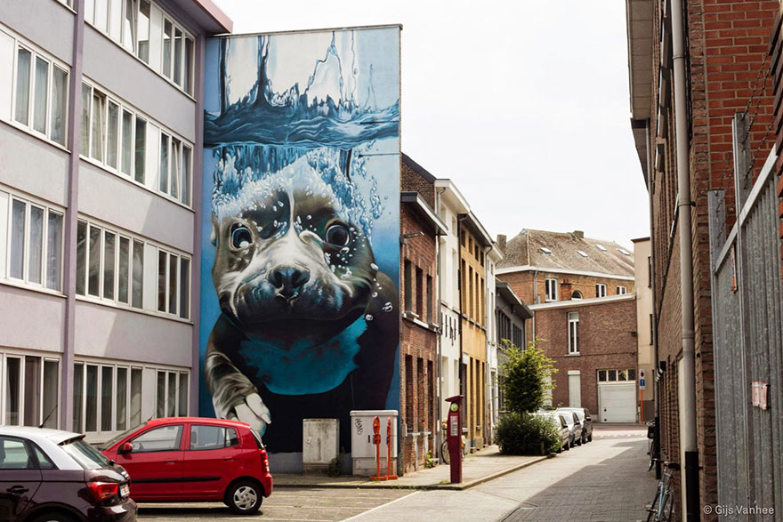 14095579308702 diving dog street art mural smates bart smeets 4 4 Story Street Art Mural Of A Dog Diving Underwater Unveiled In Belgium