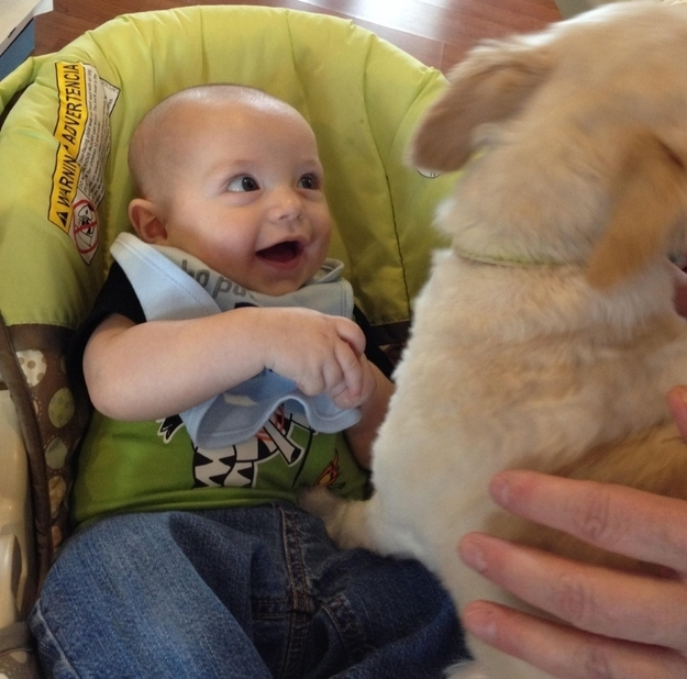 14095579613962 babies meeting dogs 01 Here Are 15 Pictures That Prove Its The Simplest Moments That Mean The Most. Heart = Exploded.
