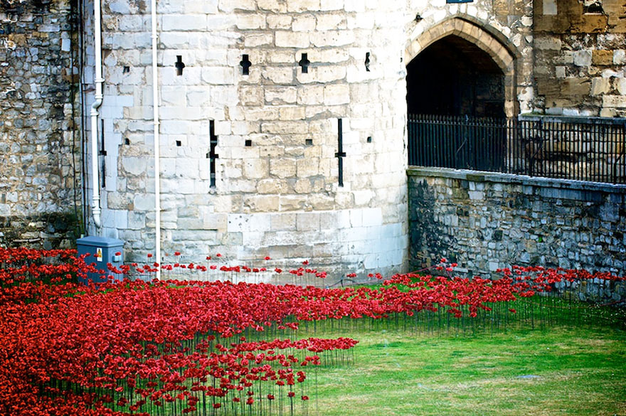 14095593314844 ceramic poppies first world war installation london tower 6 888,246 Poppies Pour Like Blood From The Tower Of London To Remember The Fallen Soldiers Of WWI