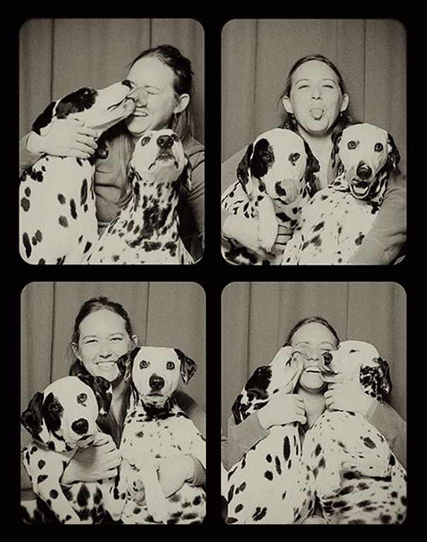 dogs photo booth 6 A Woman Put Dogs In A Photo Booth. What Happened Next Is The Cutest Thing Ever!