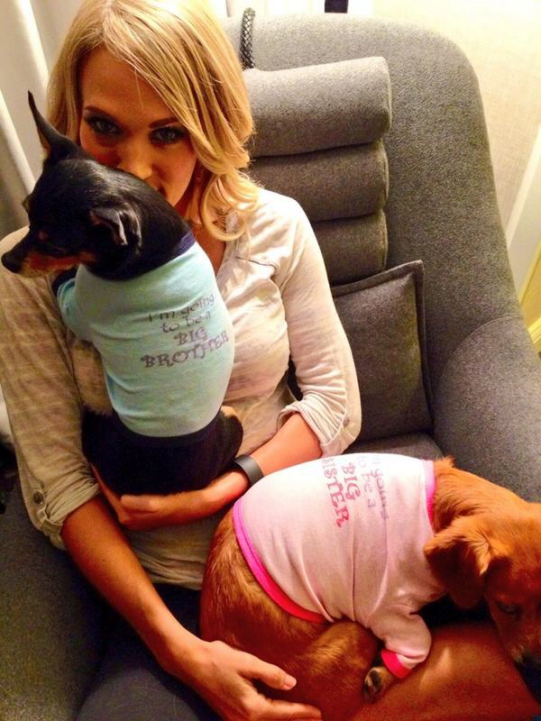 image27 Carrie Underwood Dogs Make Big Announcement on Labor Day! Check Out What They Have to Say