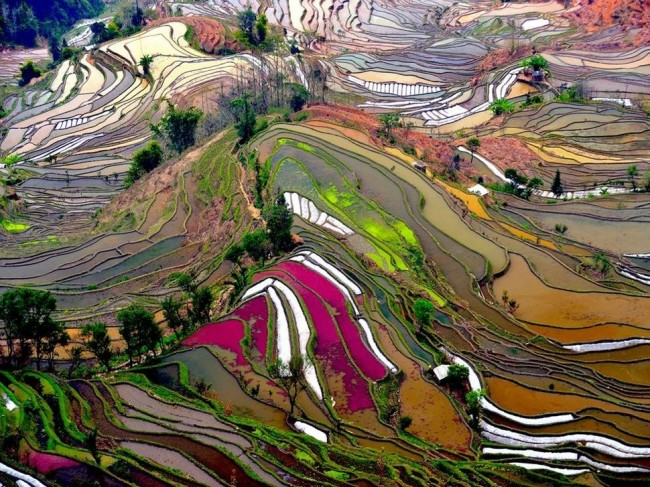image95 650x487 15 Most Incredibly Colorful Natural Landscapes on Earth That You Have Never Seen Before