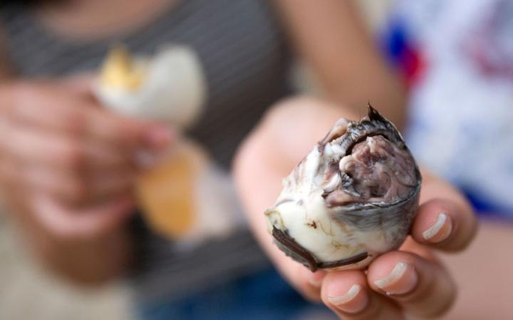 balut 2537790a large 20 Odd Foods from Around the World that you should Try