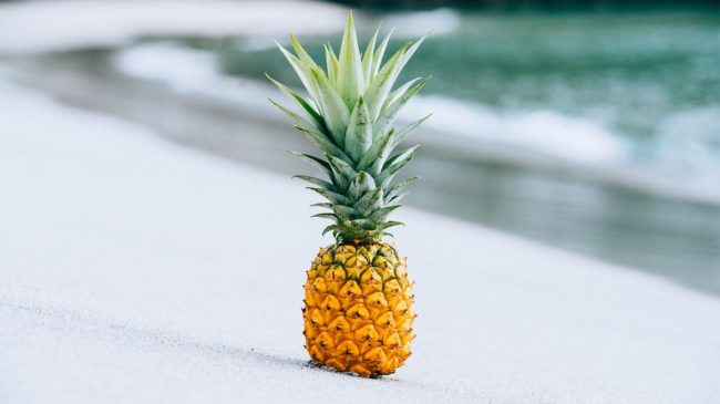 Why is a pineapple called a pineapple 650x365 Why is a pineapple called a pineapple?