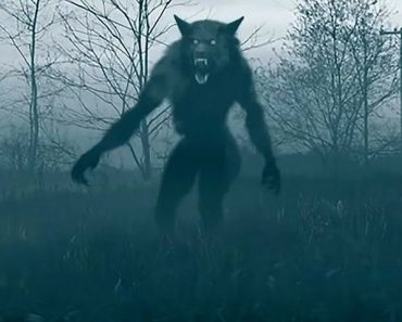 Are werewolves real