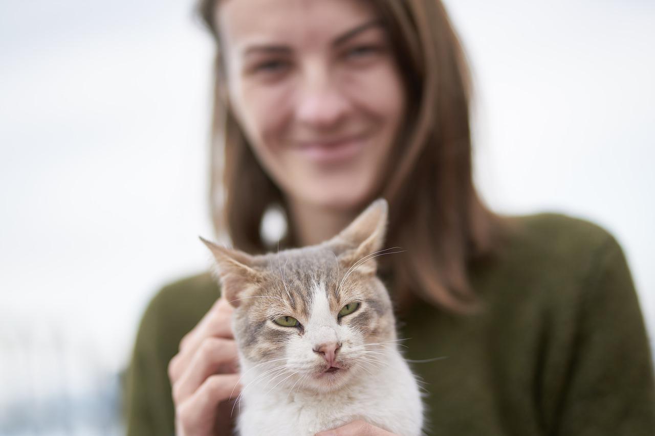 Why do cats like earwax Why do cats like earwax? Reason Explained